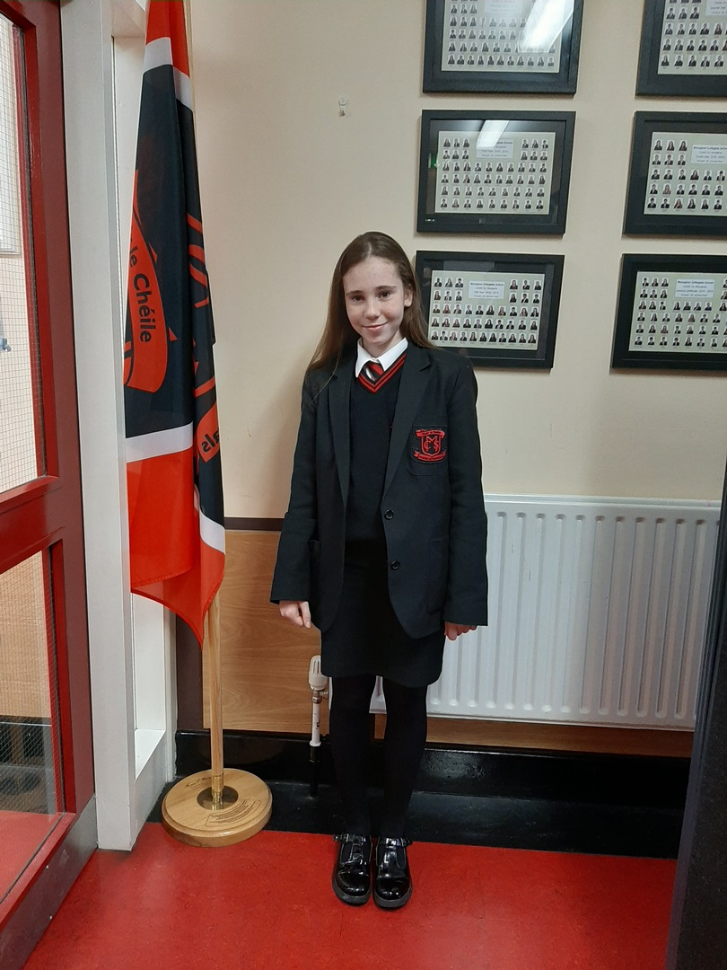 Girls Uniform with optional jumper (Copy)